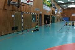 Handballturnier_IGS_160318 (22) (Kopie)