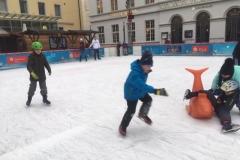 Eislaufen_070119 (22)