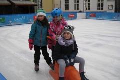 Eislaufen_061217 (5) (Kopie)