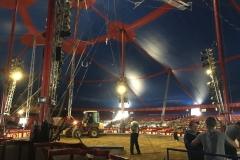 Wanderung_Zirkus Krone_160518 (52) (Kopie)
